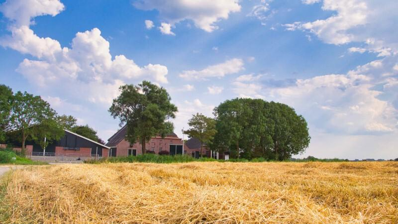 Open Toptrouwlocatie Route | Hayema Heerd
